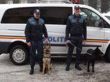 Unitatea Canină - Proiect Pilot la I.P.J. Maramureş