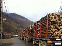 URMĂRI PROTEST: Premierul Ponta a anunțat intenția adoptării unei OUG prin care să interzică temporar exportul de masă lemnoasă neprelucrată
