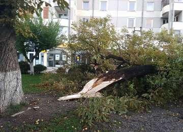 URMĂRILE MEZOCICLONULUI - 71 de localități maramureșene fără curent electric, sediul Serviciului de Ambulanță Județean a fost distrus total