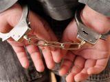 Urmărit internațional căutat de autoritățile din Rusia, depistat în vama Petea