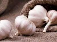 Usturoiul, remediu natural împotriva căderii părului