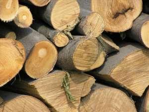 Valea Vişeului: Material lemnos confiscat de poliţişti