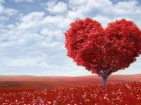 VALENTINES DAY - Semne dovedite științific că sunteți îndrăgostit/ă