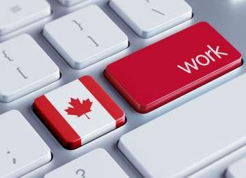 VEȘTI BUNE! Canada va recunoaște studiile specialiștilor români