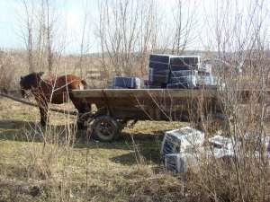 VIDEO CONTRABANDĂ: Țigări în valoare de 150.000 de lei transportate cu căruța