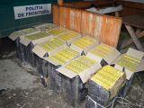 VIDEO: Contrabandişti reţinuţi, tigări şi maşini confiscate de poliţiştii de frontieră în Sighet, Sarasău şi Valea Vişeului