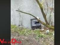 VIDEO: ACCIDENT MOISEI - A plonjat în albia râului Vişeu după ce a rupt 2 copaci