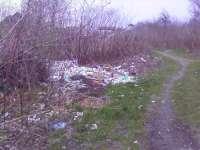 VIDEO: NESIMȚIREA UNOR SIGHETENI ȘI NEPĂSAREA AUTORITĂȚILOR LOCALE - Parcul dendrologic, groapă de gunoi