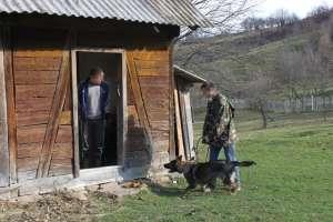 VIDEO: Rona de Sus - Contrabandist depistat cu ajutorul câinelui de urmă Noza