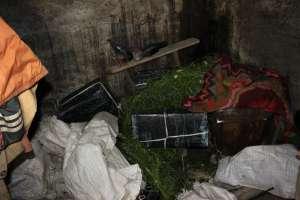 VIDEO: Țigări ascunse in beciul unei case din Crăciunești și persoane reținute la Sarasău