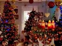VIDEO: Un cuplu german și-a decorat casa cu peste 100 de brazi de Crăciun