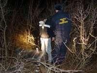 """VIDEO: """"Viața de noapte"""" a polițiștilor de frontieră"""