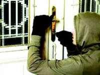Vişeu de Sus: Furturi cu un prejudiciu total de aproximativ 15 000 de lei soluţionate de poliţişti