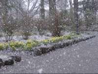 Vremea, la extreme în următoarele zile. PLOI, lapoviţă şi ninsoare