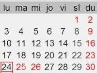 Zilele de 24 și 31 decembrie ar putea fi declarate libere