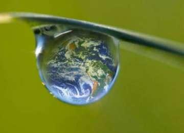 Ziua Mondiala a Mediului - 5 iunie