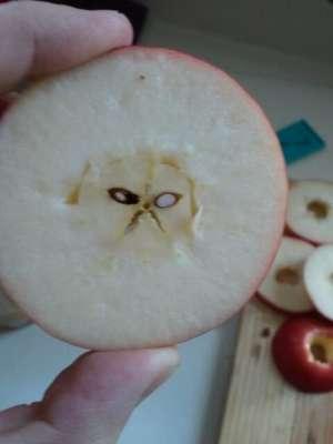 O fotografie face senzaţie pe internet. Ce a găsit un bărbat într-un măr