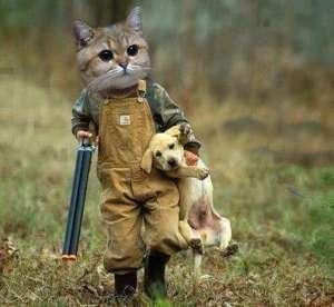 Pisica a plecat la vanatoare