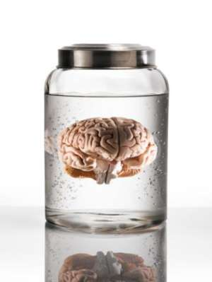 Un american a reușit să vândă un creier uman pe internet